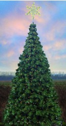 OREGON CASCADE FIR TREE WITH WIDE ANGLE LED LAMPS