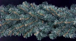 BLUE SPRUCE BRANCHED GARLANDS
