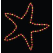 6' STARFISH