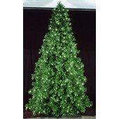 16' Paramount Pine Tree - Daytime View with C-7 LED lights